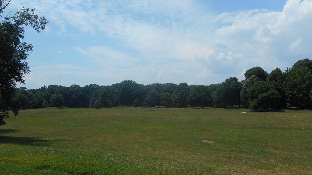 prospect-park