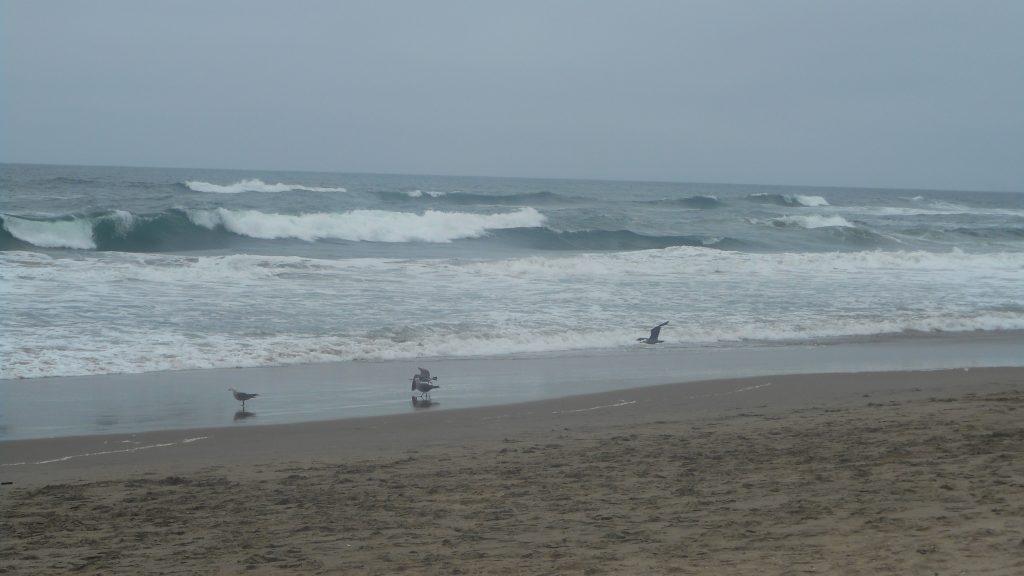 sf-ocean-beach-5