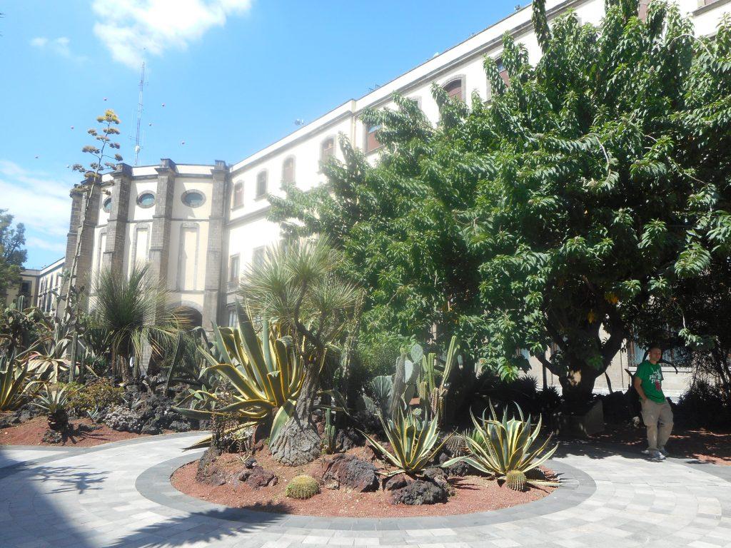 mexico-palacio-nacional