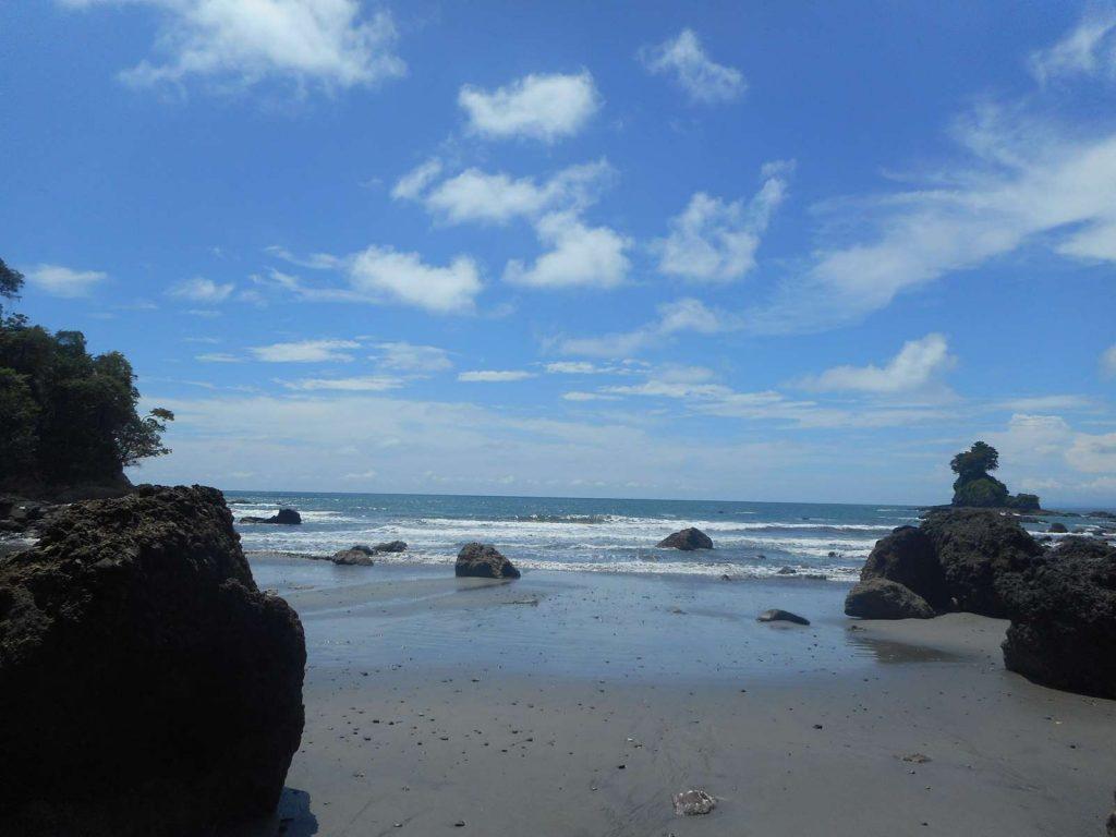 costarica-plage-jungle